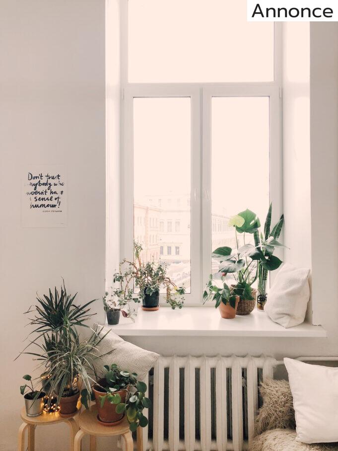 Vindue i lejlighed